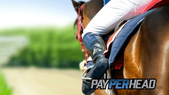 Preakness Stakes Betting Trends