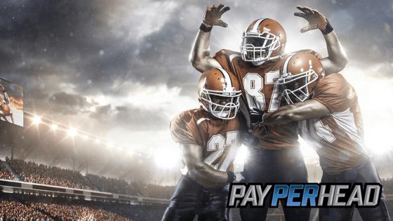 premium sportsbook softward for betting season