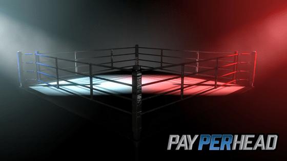 Mayweather vs Mcgregor for Bookies