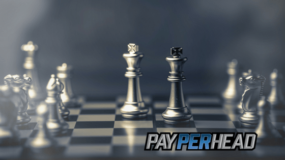 Pay Per Head Strategies To Use Now