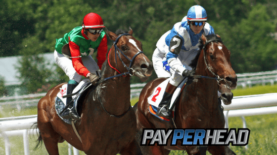 Online Racebook Management Tips