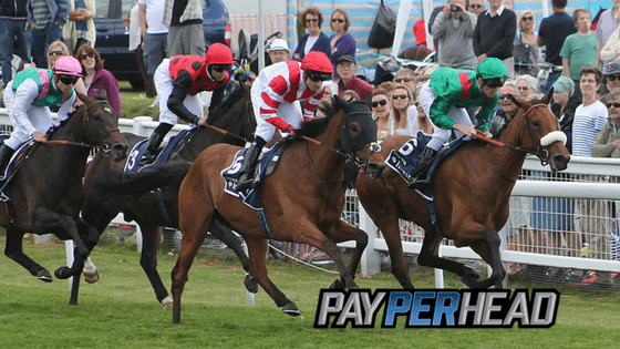 Generate Profit With Derby Horse Racing