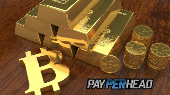 Is Bitcoin The New Capital Flight