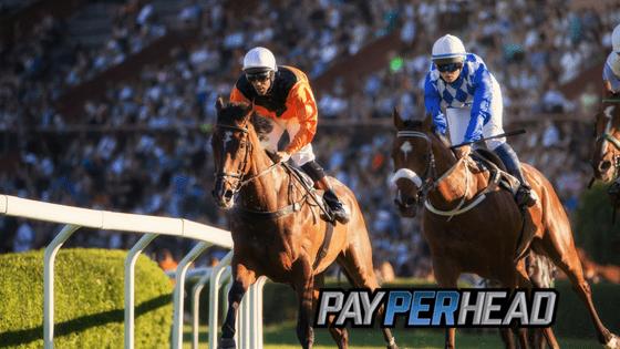 2018 Belmost Stakes Racebook