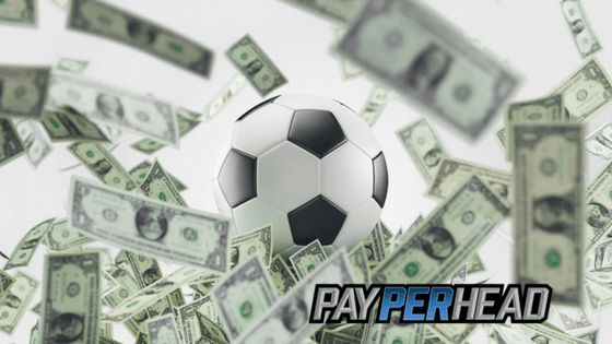 Bookie FIFA World Cup Betting Basics