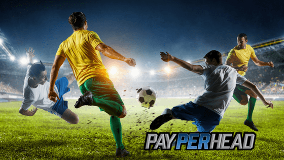 Lessons learned for soccer betting profits