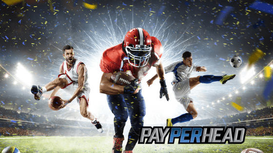 NFL Week2 Pay Per Head Tools