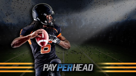 NFL Football Betting Preview