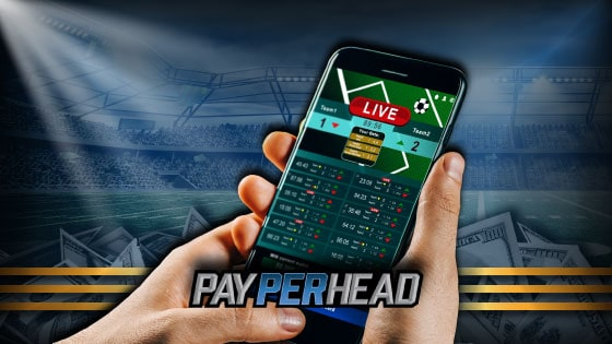 Live Betting Features