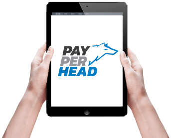 Pay Per Head logo Tablet Image