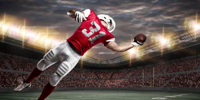 NFL Season Pay Per Head Concept