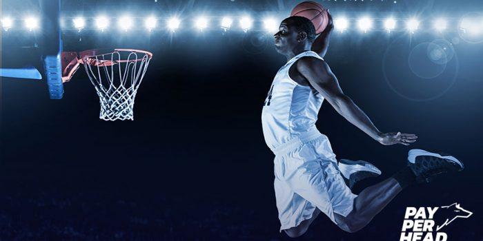 NBA Basketball Per Head Concept Canada