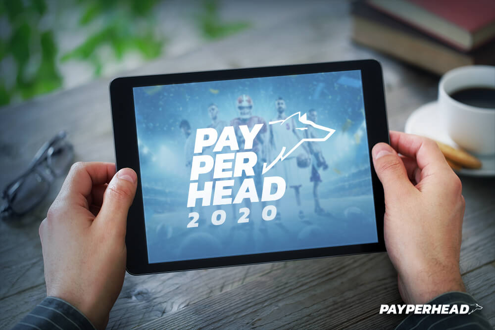 pay per head bookie 2020 concept