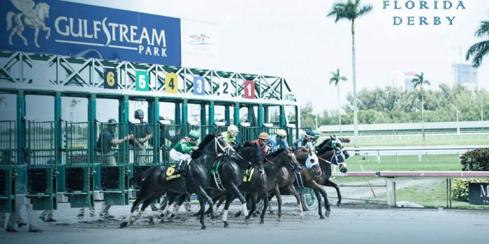 DubFlorida Derby Horse betting