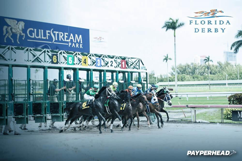 DubFlorida Derby Horse betting