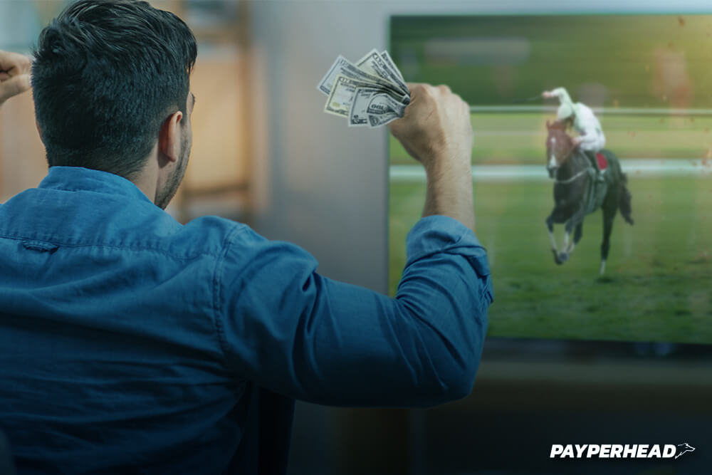 how to turn sports bettors into horseplayers