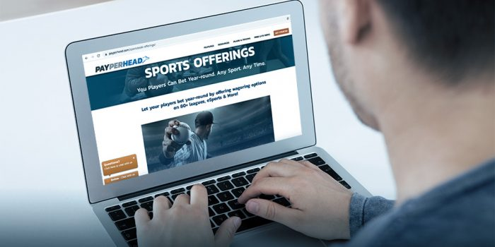 sports betting options for players' radar