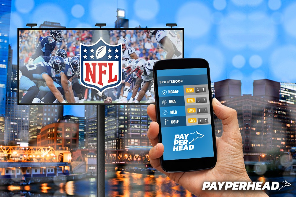 NFL Regular Season - Prepare Your Sportsbook